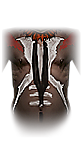 File:Chestarmor 001 witchdoctor male.png