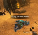 Dying necromancer.jpg
