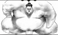 Cinematic-panel-56-sumo.jpg